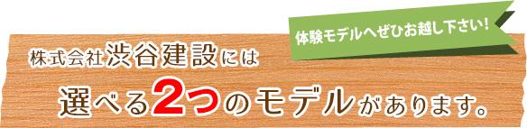 株式会社渋谷建設には選べる2つのモデルがあります